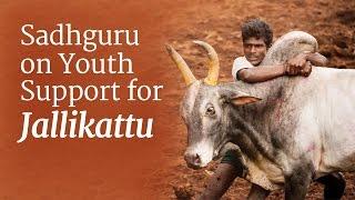 getlinkyoutube.com-Sadhguru on Youth Support for Jallikattu