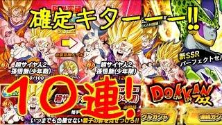 getlinkyoutube.com-【ドカバト】ドッカンフェス10連!新セル&悟飯(本命)狙い!!DBZ Dokkan Battle