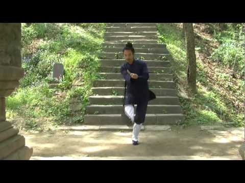 Wudang Taming Tiger Form DVD