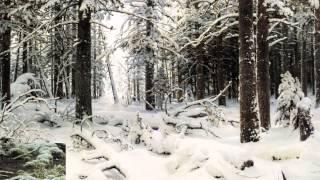 getlinkyoutube.com-La pittura e la neve: da Bruegel a Monet