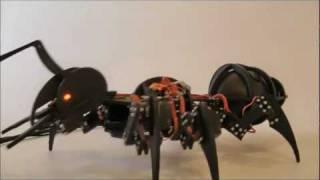 getlinkyoutube.com-Robot ant