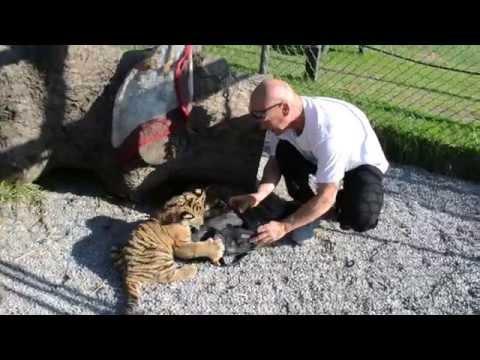 yogaFLIGHT visits Nadine and Sassy at Jungle Cat World