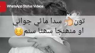 Sindhi WhatsApp Status Videos || Jalal Chandio || Sindhi Songs || width=