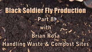 getlinkyoutube.com-Black Soldier Fly Production Part 8 with Brian Rosa, Handling Waste & Compost Sites