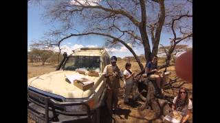 getlinkyoutube.com-Safari Tanzania 2013 GoPro