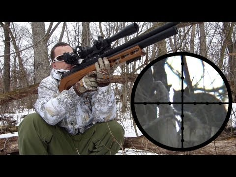 Edgun Matador R3 .25 Squirrel Hunting Review