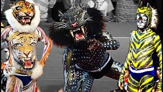 getlinkyoutube.com-Tiger dance/ Pili Nalike -Barke Tigers Mangalore