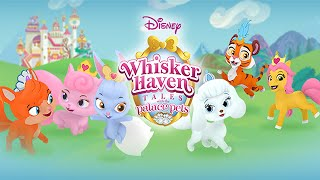 getlinkyoutube.com-Disney Palace Pets - Whisker Haven Tales | Play Girls Games