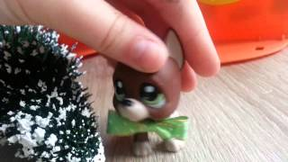 "getlinkyoutube.com-LPS : ""Zakręceni"" #12 Littlest Pet Shop !"