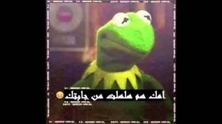 getlinkyoutube.com-صور مضحكة العكروك مع غنيه لاطحين سيف عامر