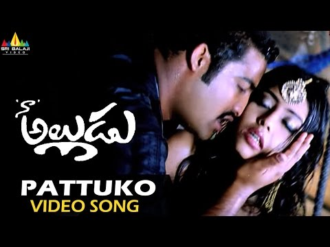 Patuko Ko Patuko Ko Video Song - Naa Alludu (Jr.NTR, Shriya, Genelia)