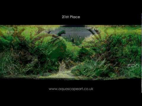 IAPLC 2011 Top 27 Aquascapes - International Aquatic Plants Layout Contest
