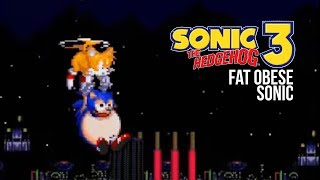 Sonic 3 FAT OBESE SONIC! Gameplay footage simulated