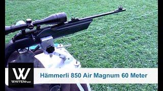 Hämmerli 850 Air Magnum 60 Meter Distanz, Schusstest, www.waffenfuzzi.de