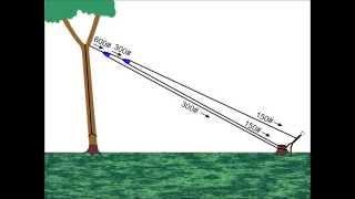 getlinkyoutube.com-Pulling Trees Down With Rope
