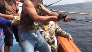 getlinkyoutube.com-ตกเก๋าถ่าน ปลาน้ำลึก มวลมหาประชาเก๋าถ่าน 2556โดยทีมงานครบุรี  fishing Andaman giant grouper