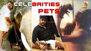 getlinkyoutube.com-Celebrities Pets | Indian Actors and Actress who love pets | Dog, Cat, Horse