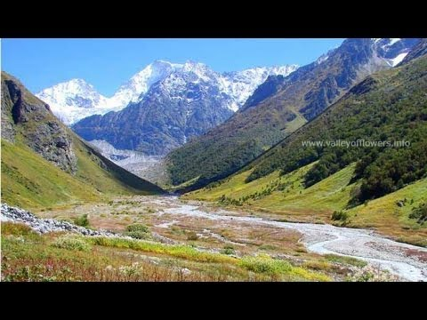 Valley of flowers after floods in uttrakhand