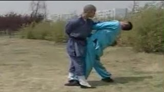 getlinkyoutube.com-Shaolin kung fu combat: 36 methods