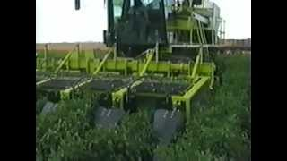 getlinkyoutube.com-Boese Pepper Harvester