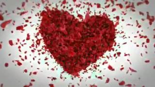 Valentine day, Tuesday,February 14, WhatsApp  video clips download