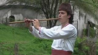getlinkyoutube.com-KOGA TRGNAV CVETO VO TUGJINA - JORDAN MITEV (Official video 2006)