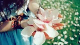 getlinkyoutube.com-Shina Song - Talib Hussain Talib HQ