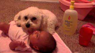 getlinkyoutube.com-Protecting his baby sister (ORIGINAL)