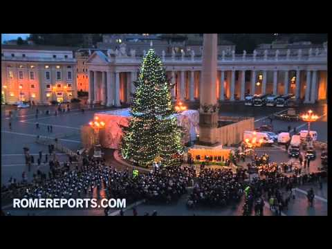 Vatican Christmas tree illuminated