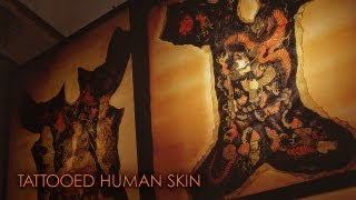 getlinkyoutube.com-刺青の人体標本 Tattooed human skin