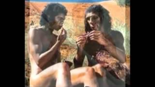 getlinkyoutube.com-วิวัฒนาการของมนุษย์(Human Evolution)