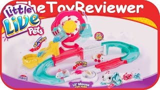 getlinkyoutube.com-Little Live Pets Lil' Mouse Fun Park Trail Mama and Babies Unboxing Toy Review by TheToyReviewer