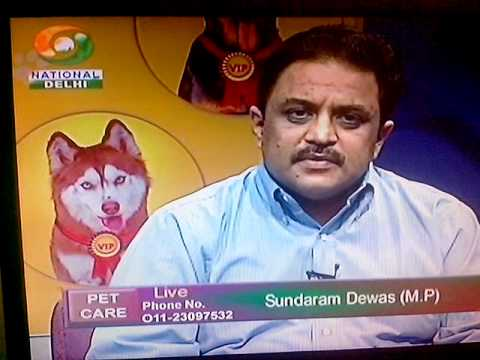 Pet Care Doordarshan May 04 2013 - Part 2