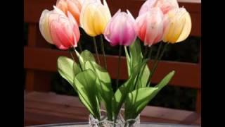 getlinkyoutube.com-How to Make Nylon Stocking Flower - Tulips
