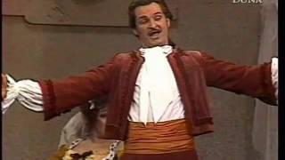 Mozart: Le nozze di Figaro - Non più andrai, farfallone amoroso (János Tóth)