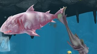 getlinkyoutube.com-Hungry Shark Evolution Ice Shark Android Gameplay #18