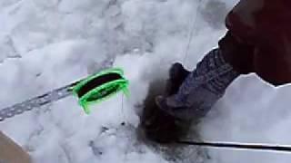 getlinkyoutube.com-Ловля судака зимой
