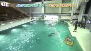 Sayumin with dolphin