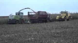 getlinkyoutube.com-Уборка кукурузы на силос, осень 2013.
