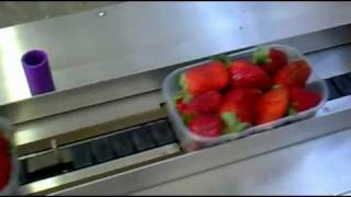getlinkyoutube.com-ORANGE - Horizontal flow pack machine (Strawberries)