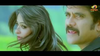 Nesthama Nesthama Song   Damarukam Movie Video Songs   Nagarjuna   Anushka   DSP   Mango Music width=