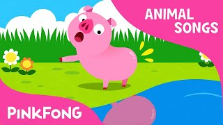 Did You Ever See My Tail? | Animal Songs | PINKFONG Songs for Children width=