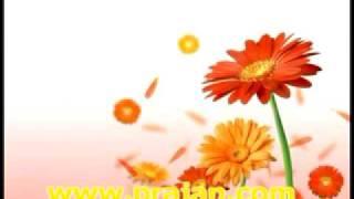 getlinkyoutube.com-ในวังวน(กำลังใจ)ตอนที่1