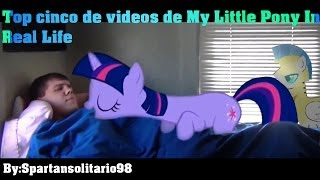 getlinkyoutube.com-Top cinco de videos sobre My Little Pony In Real Life #5
