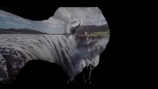 Nikola-Marjanovi-Gloria-Official-video width=