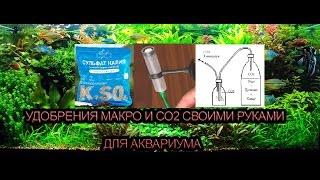 Как своими руками сделать удобрения для аквариумных растений