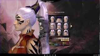 getlinkyoutube.com-★ Guild Wars 2 - Character Creation - Elementalist Class - Female Norn - PC HD