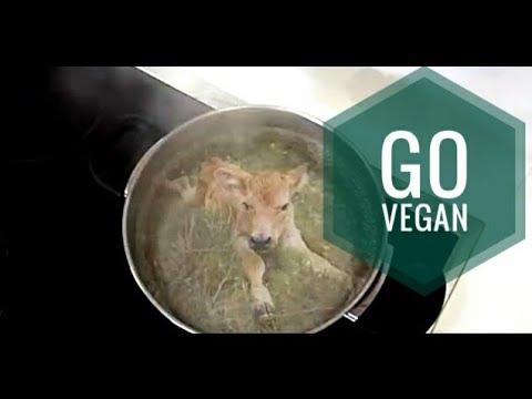 Vegan - Я больше не ем Животных