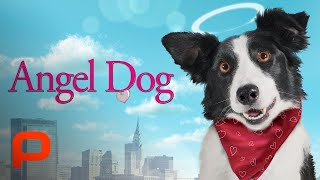 Angel Dog (Full Movie) dog helps man learn to live again after he loses everything width=