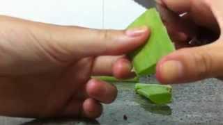 Cómo hacer crema de aloe vera casera - Loción aloe vera casera